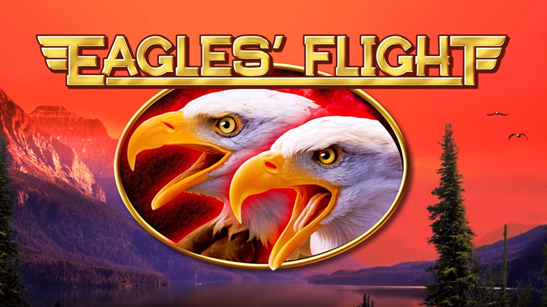 eagles flight banner