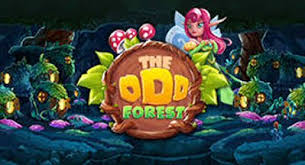 The Odd Forest cover